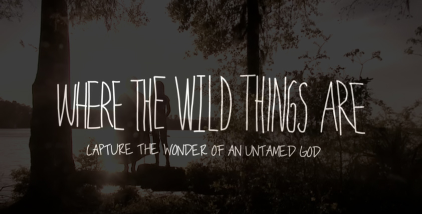 WildthingsAre